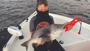 Treasure Coast Winter Fishing Report (2020-2021)