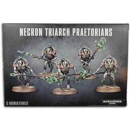 Warhammer 40K Necron Triarch Praetorians