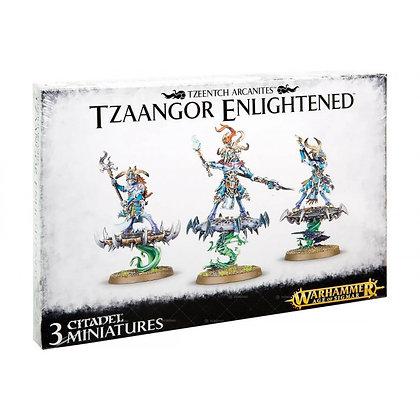 Warhammer Age of Sigmar Disciples of Tzeentch Tzaangor Enlightened