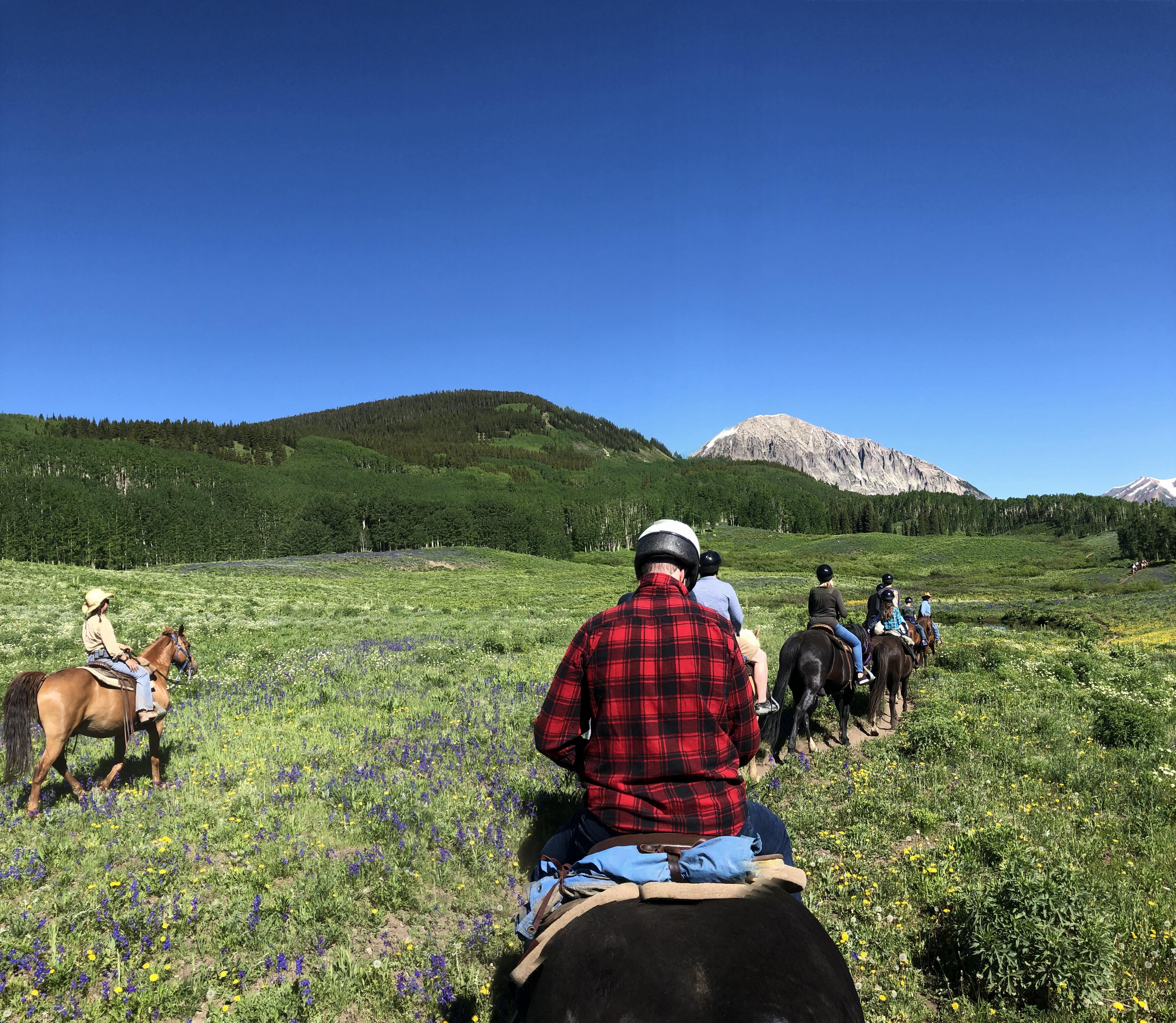 Crested Butte Colorado horseback riding