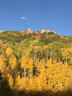 Crested Butte Colorado fall colors