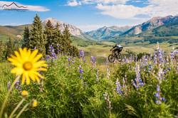 Crested Butte Colorado biking trails