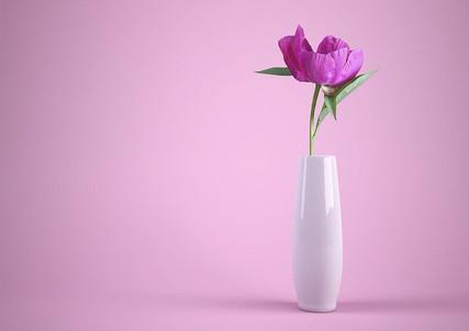 flower-3175428_640.jpg