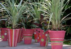 spot & stripe plant pot