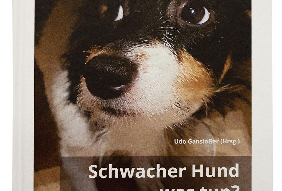 Schwacher Hund - was tun?