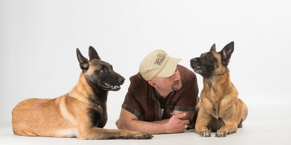 Ausdrucksverhalten für den Hundehalter - Führen und Folgen was heisst dies?