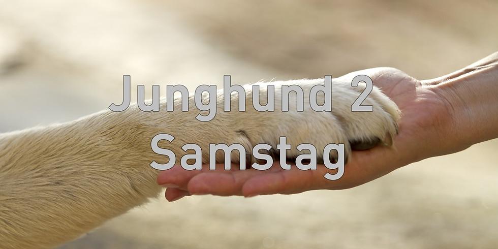 Junghund 2 Samstag, Start Februar 2021