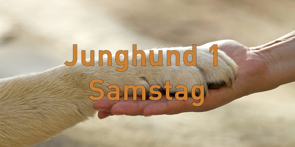 Junghund 1 Samstag, Start Februar 2020 (15.00 Uhr)