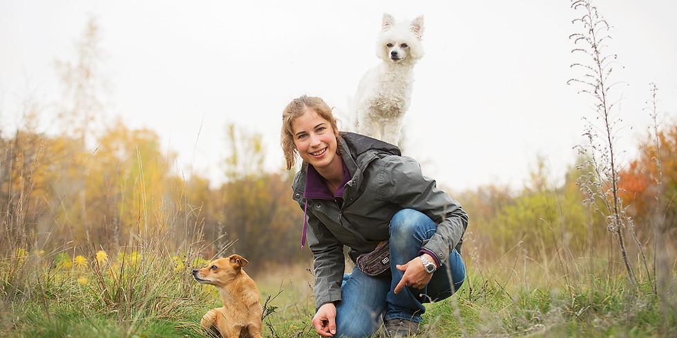 Emotionen und Persönlichkeiten mit Dr. Stefanie Riemer - Webinar