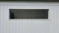 Lichbandfenster