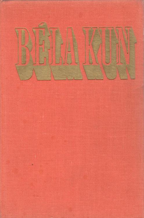 Kun Béla, O maďarské republice rad