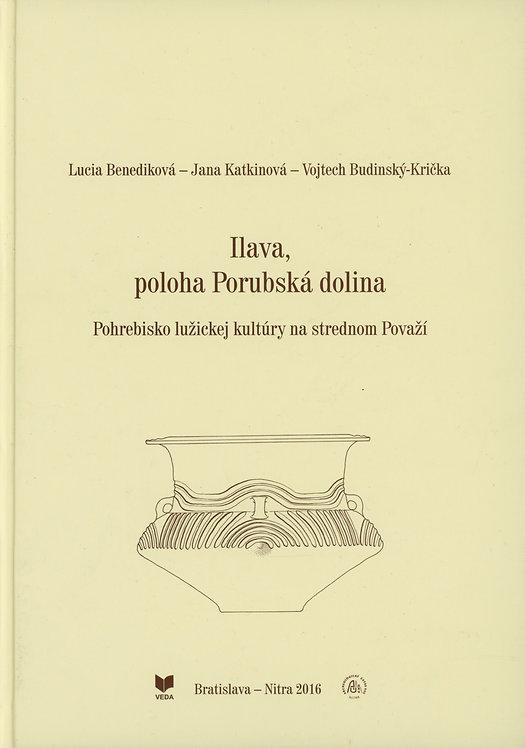 Benediková Lucia, Ilava, poloha Porubská dolina. Pohrebisko lužickej kultúry