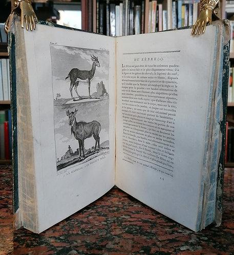Bernard P., Histoire Naturelle de Buffon, Tome V.