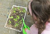 Centro de Animação de Infância de Vermoim: Horta Biológica