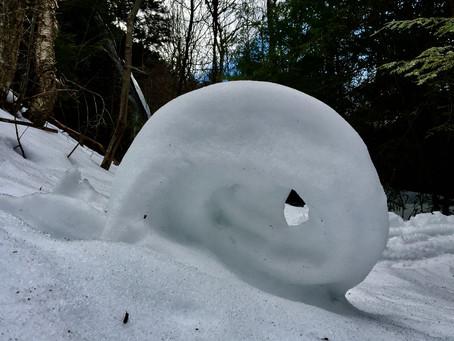 The Snow Goblins Got Us