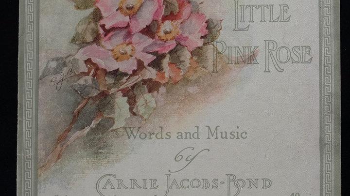A Little Pink Rose