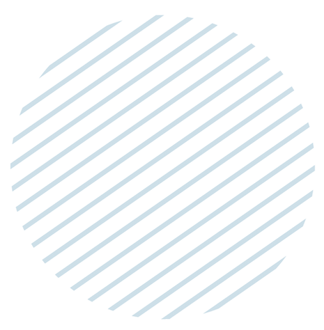 circulo lineas-01-02.png