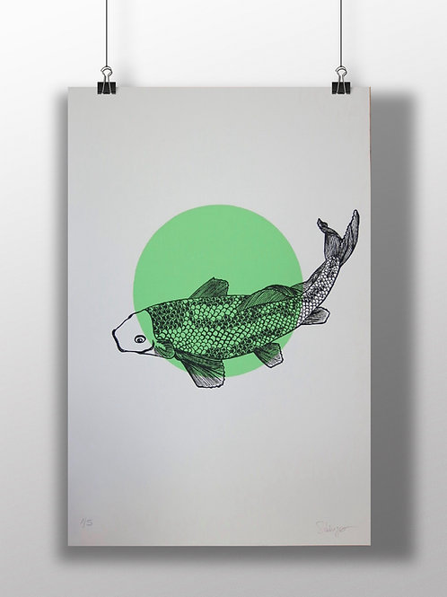 Affiche Koï