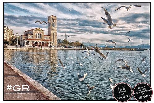 Volos Agios Konstantinos Birds