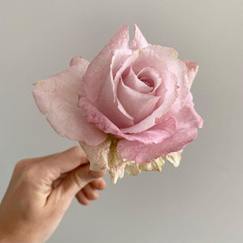 Hand made Wafer paper rose  Цветок из ва