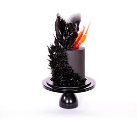 371 cake.jpg