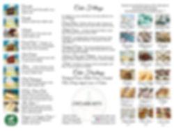 trifold inside webiste.jpg