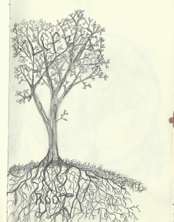 Life Roots