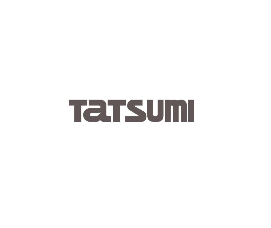 www.tatsu-mi.co.jp
