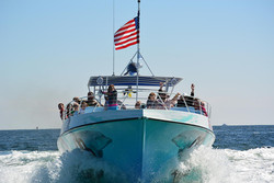 Sea Quest Dolphin Cruise Boat