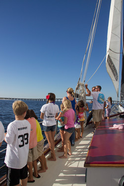 Sailing Dolphin Cruise Destin Florid