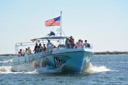 Sea Quest on dolphin tour in Destin