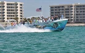 Dolphin Cruise Destin Fl, Dolphin Tours Destin Fl, Destin Dolphin Watching