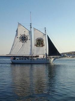 Sailing Dolphin Cruise in Destin