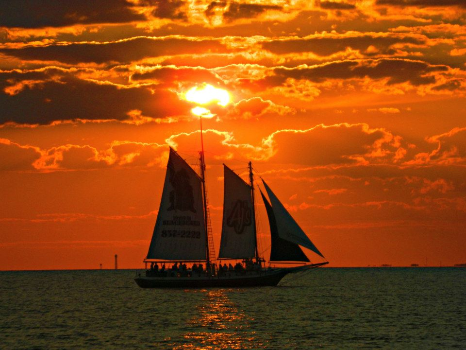 Sailing Sunset Dolphin Cruise