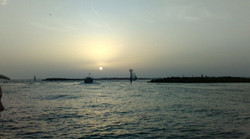 Destin Dolphin Sunset Tour