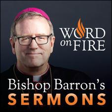 Bishop Barron's Sermons