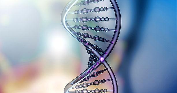 DNA einer Zelle