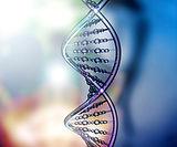 Children DNA Test