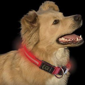 NITE IZE LED DOG COLLAR