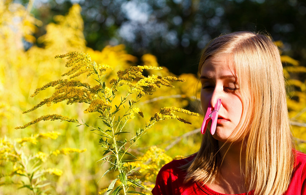 Hay Fever Allergy Brisbane | Hay Fever Allergy Gold Coast