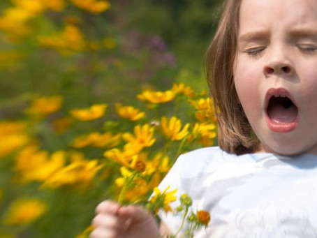 Coping with Hay Fever - Spring - Allergy Testing Brisbane | Allergy Testing Gold Coast
