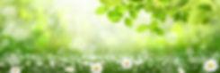 AdobeStock_190102147.jpeg