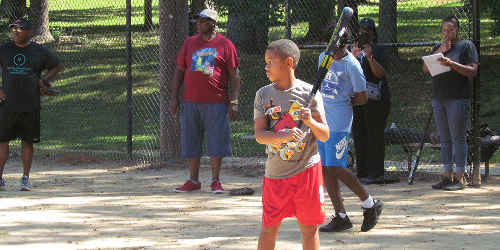 VBA FAMILY AND FRIENDS PICNIC/SOFTBALL GAME (4 Annual)