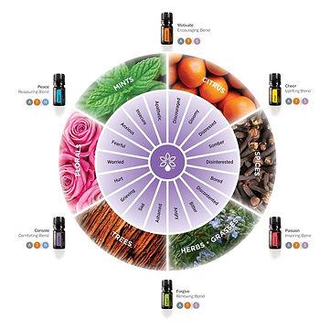 aromatherapy english.jpg