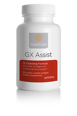 gx-assist.jpg