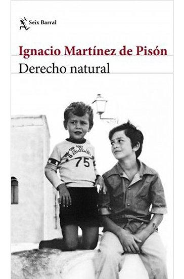 DERECHO NATURAL. MARTÍNEZ DE PISÓN, IGNACIO