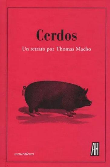 CERDOS. MACHO, THOMAS