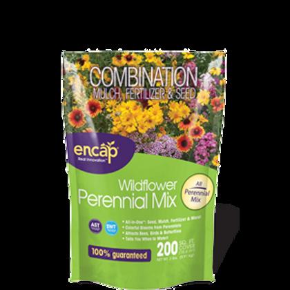 Encap Wildflower Perennial Mix