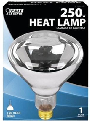 250w Clear Heat Bulb