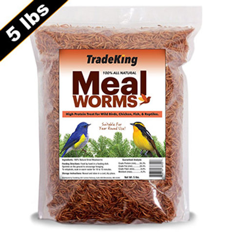 Clear bag of dried mealworms